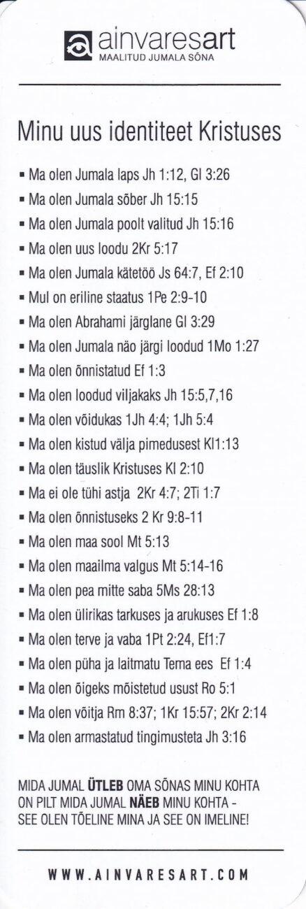 Järjehoidja-Ain-Vares-3