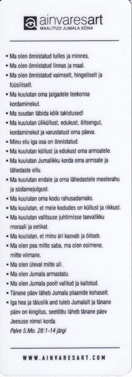 Järjehoidja-Ain-Vares-6
